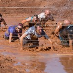 mud crawlers